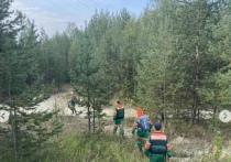 Спасатели стали чаще выезжать на поиски пропавших грибников в Ноябрьске