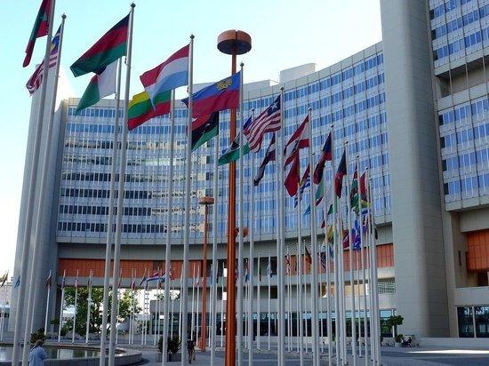 В МИД рассказали о возможности признания талибов властями Афганистана