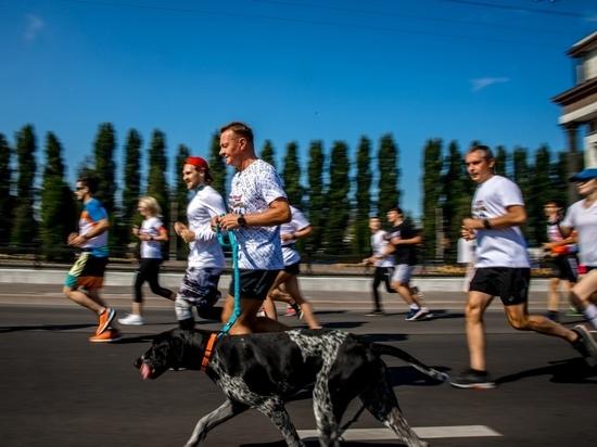 Собака курского губернатора приняла участие в воскресном марафоне
