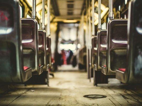 В Томске дошло до суда дело водителя, купившего 87 автобусных билетов
