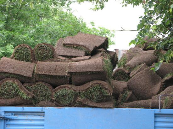 Псковские теплосети восстановят асфальт и газон после проведённых работ на Шестака