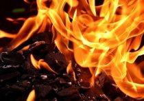 Мусорный контейнер загорелся в Великих Луках