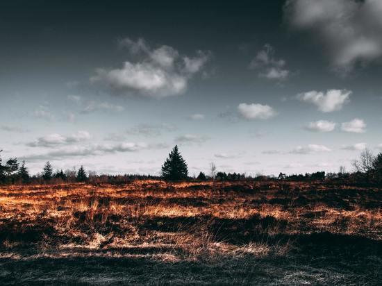 Высокая пожарная опасность сохраняется на севере Сахалина