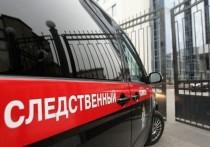 Бастрыкин поручил провести проверку после жалобы на удаление здоровой почки у пациента больницы Ноябрьска