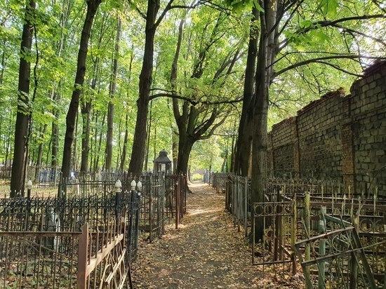 Почему мел помогает прочитать надписи на надгробьях еврейского кладбища в Туле