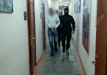 Родственники признавшегося в убийстве 8-летней девочки в Тюмени Виталия Бережного заявили, что у него есть алиби