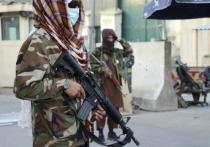Сатановский упредил талибов от фатальной ошибки: Шойгу готовится