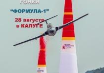 В День города калужские пилоты удивят горожан кульбитами на боевых самолетах