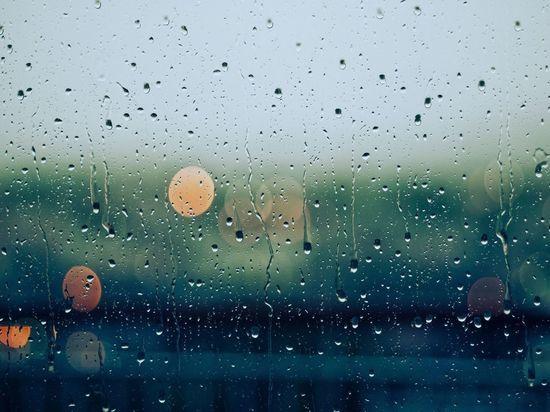 В ночь на воскресенье в Ленобласти ожидается +5 градусов