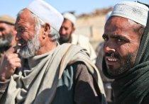 МИД РФ: среди беженцев из Афганистана могут быть террористы