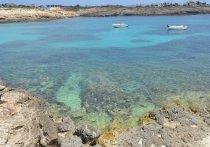 Более 500 мигрантов спасли у берегов итальянского острова Лампедуза
