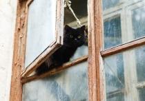 В Обнинске задержали форточника-рецидивиста