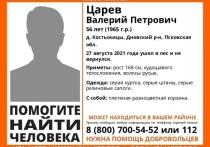 Пропавшего мужчину с плетеной корзиной разыскивают в Дновском районе