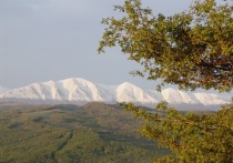 Жители Дагестана и Камчатки считают, что туристы относятся к ним с большим уважением, — и отвечают тем же