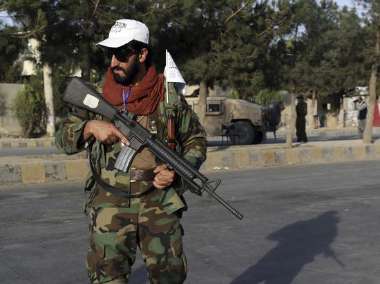 «Отмывая» талибов: почему Москва дружит с убийцами