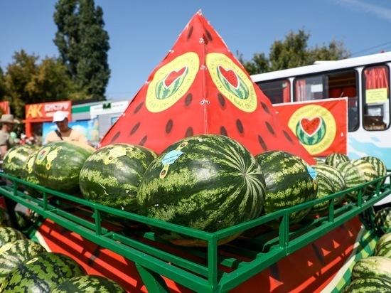 На севере Волгоградской области провели XIII арбузный фестиваль