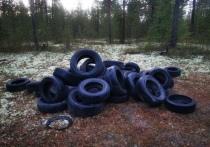 Неизвестные завалили старыми покрышками лес в Ноябрьске