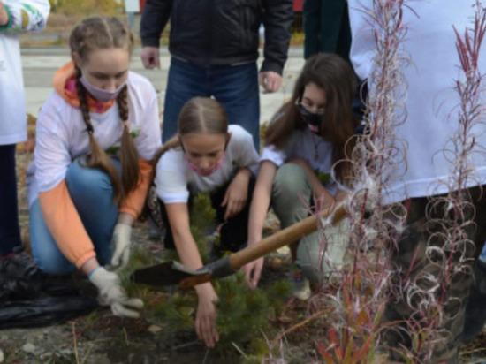 Чукотка присоединилась к экологической акции «Сохраним лес»