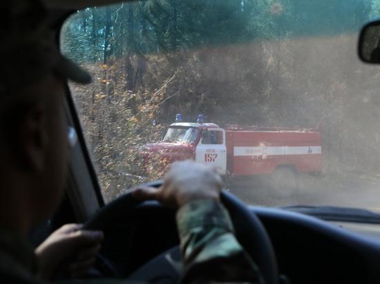 В окрестностях Сарова и Первомайска открытых очагов горения нет
