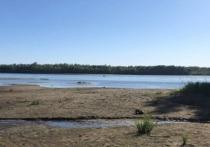 В Бийске утонул не умевший плавать 14-летний подросток