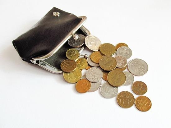 Экономист призвал к деноминации рубля: пусть станет копейкой