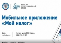 Более 500 жителей Псковской области стали самозанятыми в июле