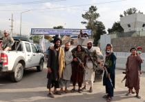 «Забудьте слово «талибы»: экс-сотрудник СВР оценил сотрудничество с ними России