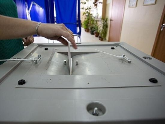 Данные сторонников «Умного голосования» из Томска утекли в сеть
