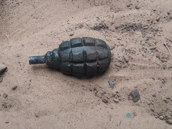 В курском селе Нагольное предотвратили взрыв гранаты Ф-1