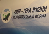Река Амур - это достояние страны, также это ценнейший природный объект Хабаровского края