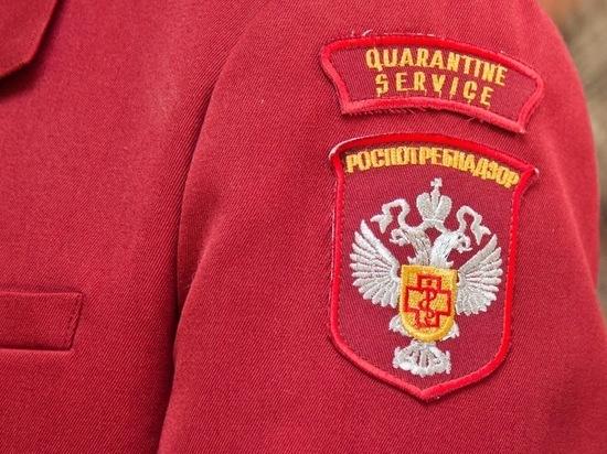 Волгоградский Роспотребнадзор напоминает о карантинных мерах