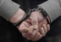 Негодяя, напавшего в начале августа с кулаками на известного ученого, биолога Владимира Цетлина, нашли правоохранительные органы