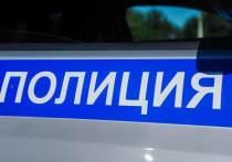 Ночью правоохранителям поступило сообщение об угоне легковушки, припаркованной около частного дома в селе Болдырево
