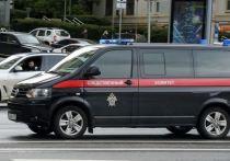 В Северной Осетии мать пыталась утопить девятилетнего ребенка в Тереке