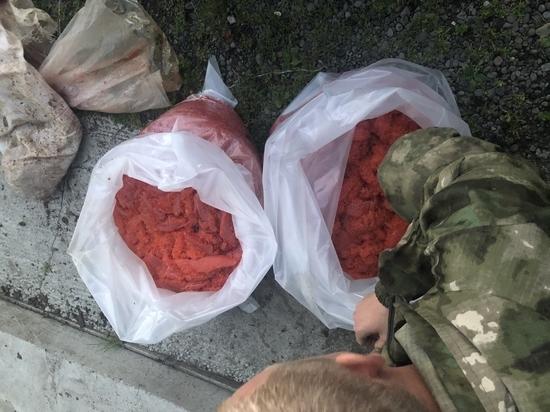 На Сахалине задержали браконьеров с 60 килограммами икры