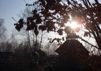 Конец сентября - середина октября - именно в этот период проводится постепенная работа по консервации дачного участка на зиму