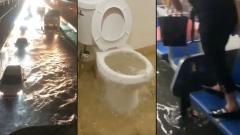 """Наводнение по-американски: появились кадры последствий урагана """"Ида"""""""