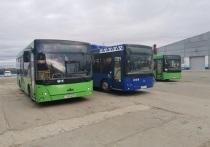 Мало автобусов и ездят не по графику: на работу общественного транспорта пожаловался житель Салехарда