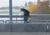 Небольшие дожди пройдут в Псковской области в субботу