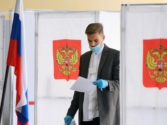 Жители Курской области смогут поучаствовать в тестировании системы дистанционного голосования