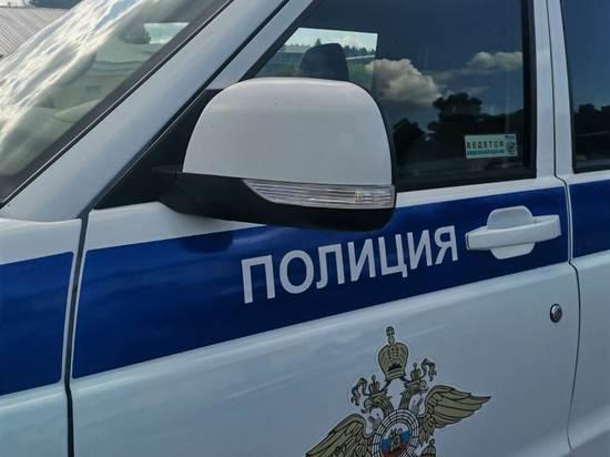 Похищение сумки в Томске полиция раскрыла по горячим следам за 10 минут