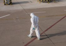 На Кубани – 242 новых случая заражения коронавирусом