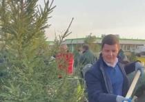 Дмитрий Артюхов и общественники высадили трехметровые ели в Новом Уренгое