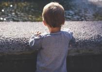 Выяснились новые подробности похождения 3-летнего мальчика по ночной Москве