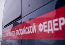 Енотаевский межрайонный следственный отдел СУ СК России по Астраханской области организовал проверку по факту гибели 17-летнего местного жителя от удара электрическим током