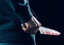 16-летний подросток порезал родную мать и попытался покончить с собой в Долгопрудном