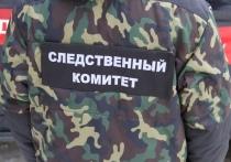 В Рязани рецидивиста арестовали за убийство знакомого деревянным бруском