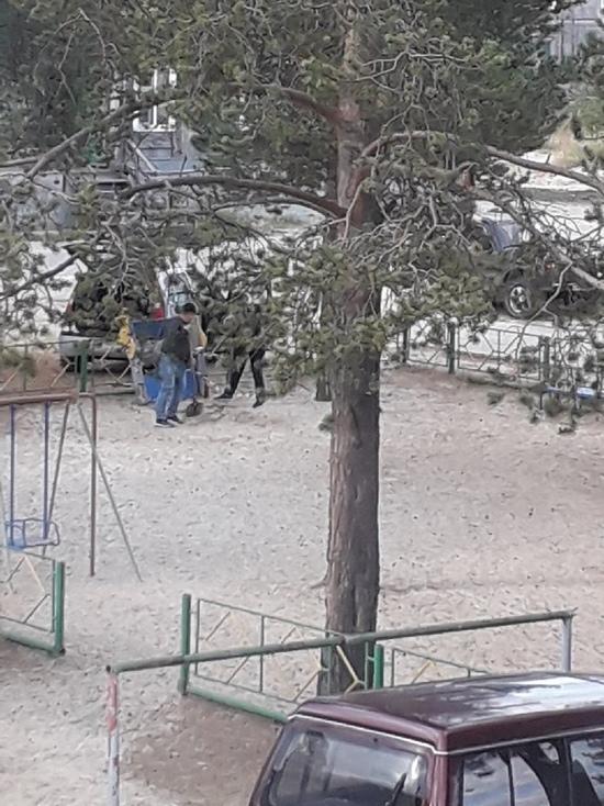 Убрали песочницу: превращение детской площадки в пустырь беспокоит жителей Муравленко