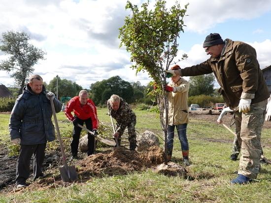 На массовую посадку деревьев пригласили жителей Серпухова