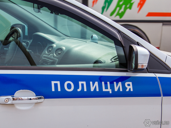 Кузбасские волонтёры нашли блузку, похожую на ту, что носила пропавшая 10-летняя девочка